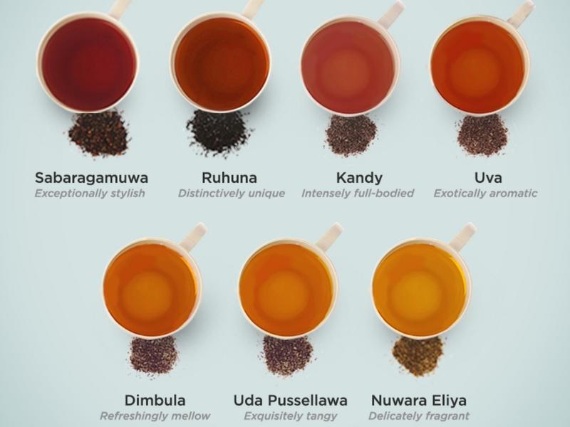 tè-srilanka-ceylonroots-3